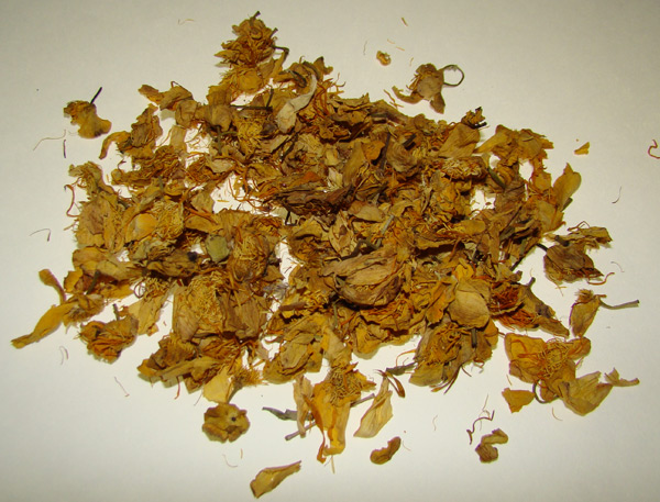 Golden Lotus Flower: pre-infused